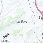 Map for location: Salinas, Spain